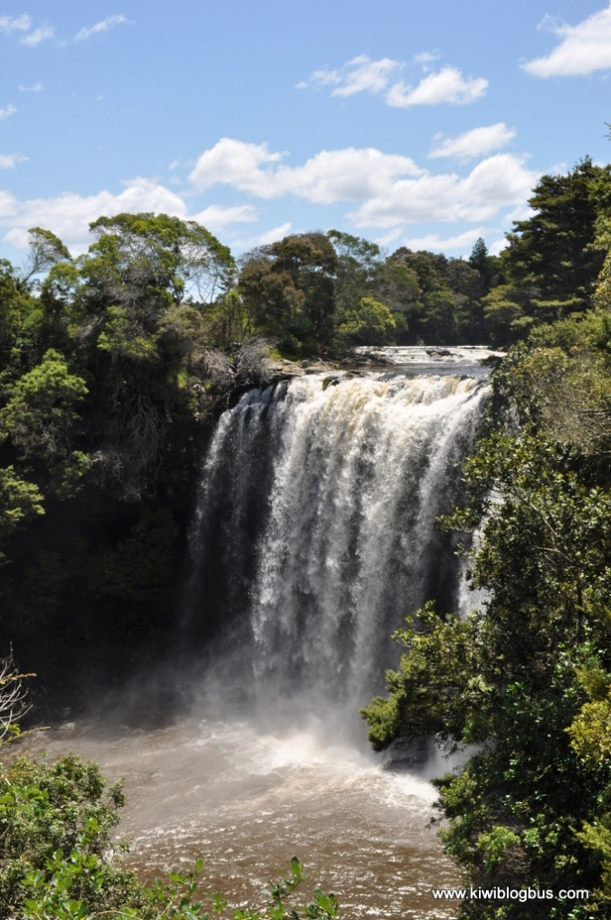 Rainbow Falls nr Paihia