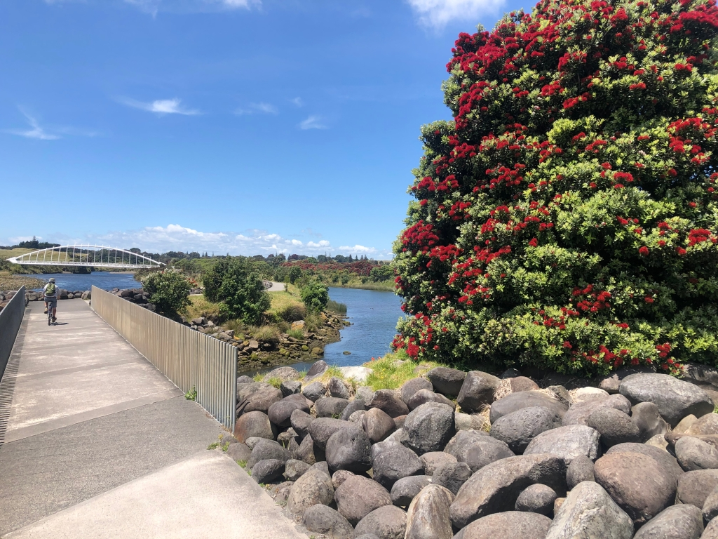 The Coastal Walkway and the Te Rewa Rewa Bridge near New Plymouth